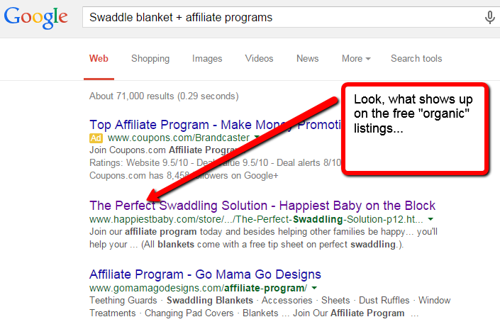 how_to_make_money_with_a_website