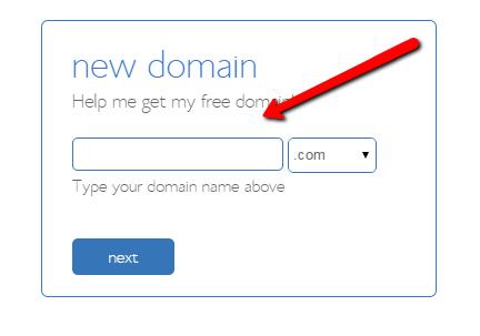 bluehost_pick_domain