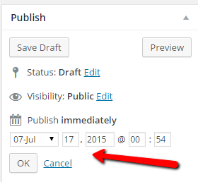 wordpress_publish_date