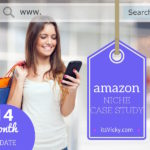 14 Month Update – Amazon Niche Site Case Study