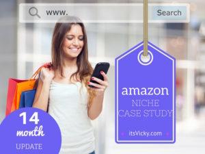 14 Month Update – Amazon Niche Site Case Study