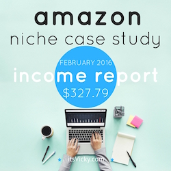 amazon niche case study income report feb