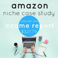 amazon niche case study income report feb