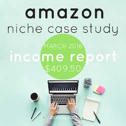amazon niche case study income report march