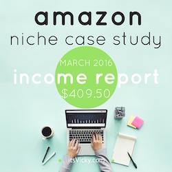 amazon niche case study income report march