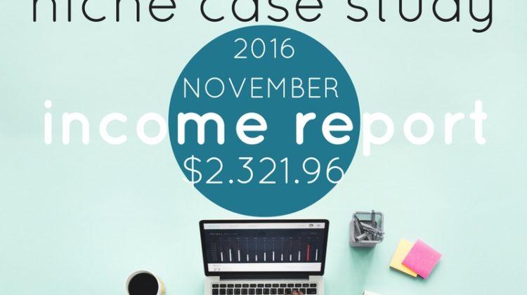 Case Study – Amazon Associate Income Report November 2016
